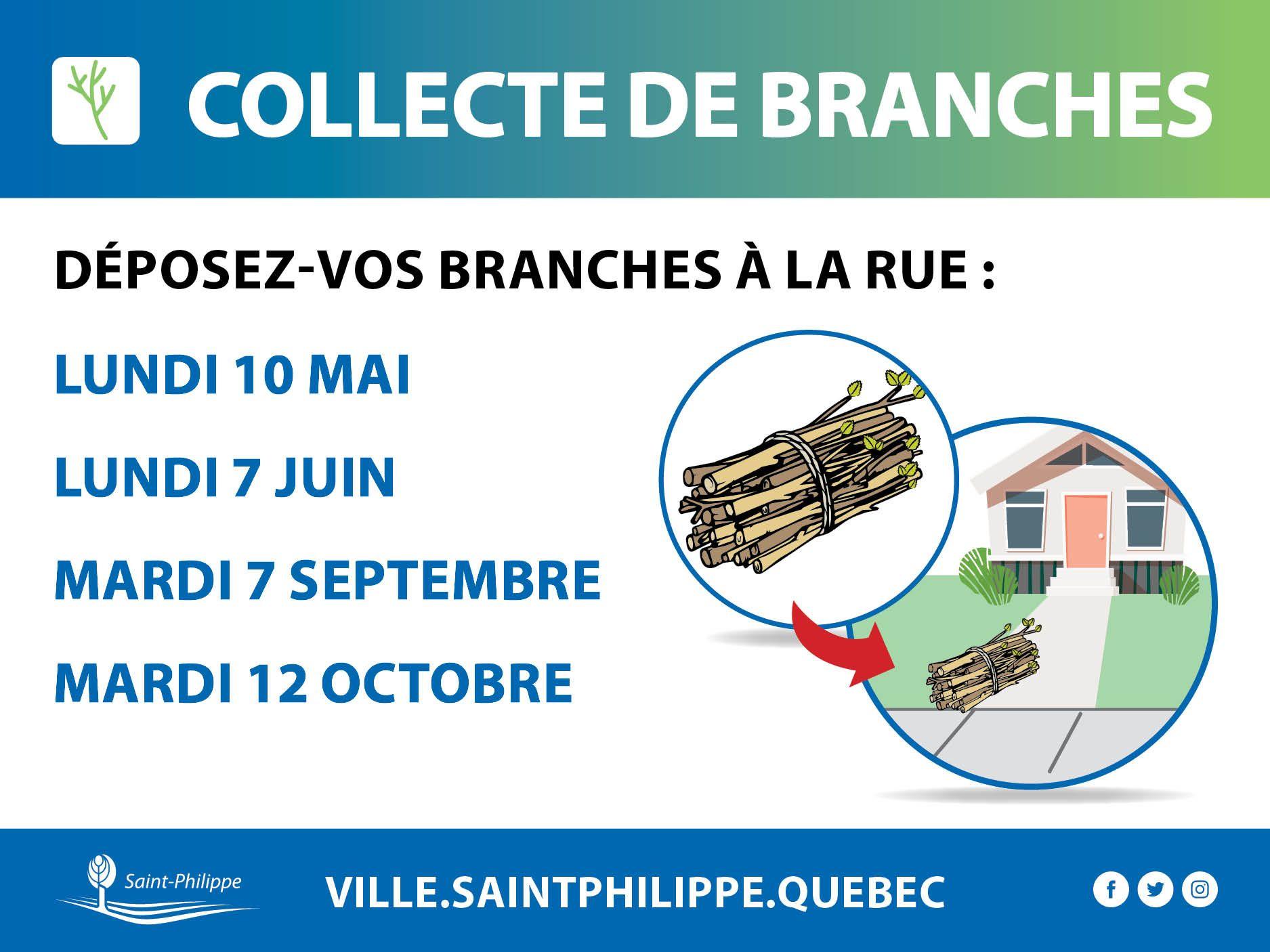 Collecte de branches 2021